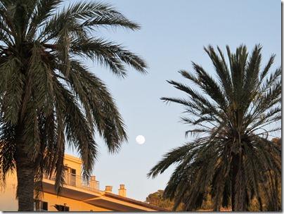 Mond über Port de Soller