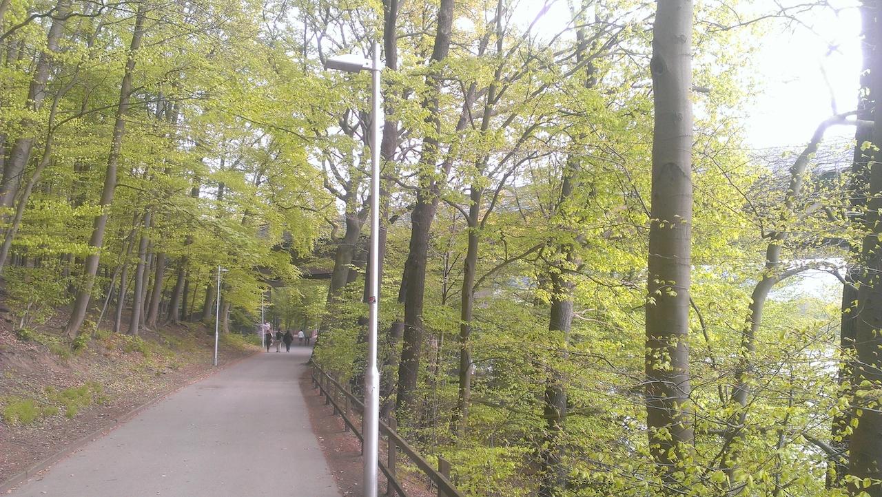PmD_15_9_Wanderung_Seilersee
